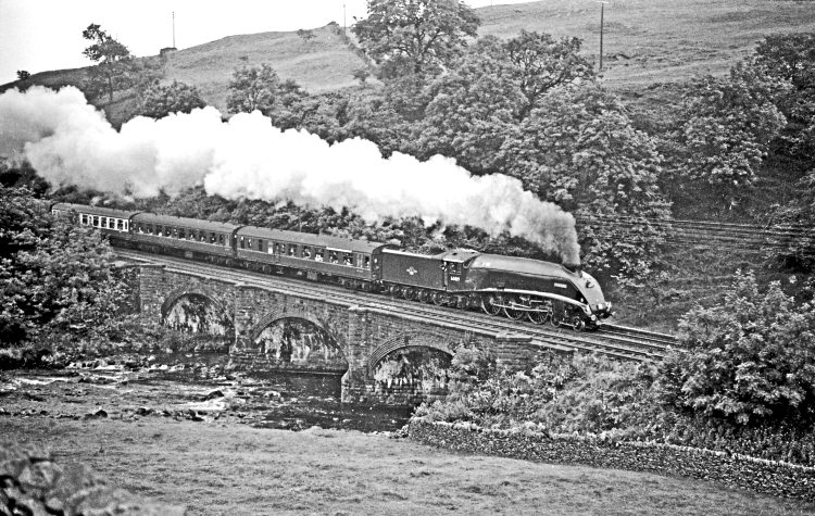 Preserved LNER A4 Pacific No. 60019 Bittern passes Sherriff's Brow on the Settle & Carlisle line at 60mph with an RCTS tour from Leeds to Glasgow on July 16, 1967. MAURICE BURNS