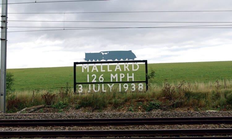 Mallard sign